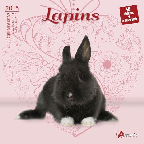 9782816006230: Lapins (2015)