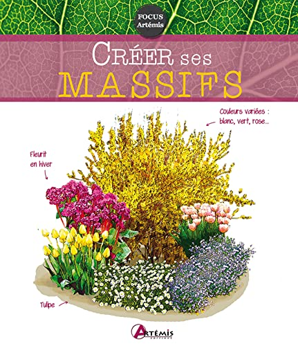 9782816006797: CREER SES MASSIFS