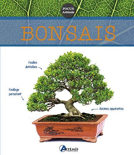 9782816006902: BONSAIS