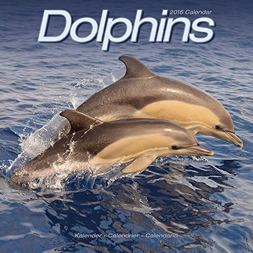 9782816007664: dauphins (2016)