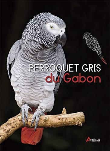 PERROQUET GRIS DU GABON: GLENDELL GREG
