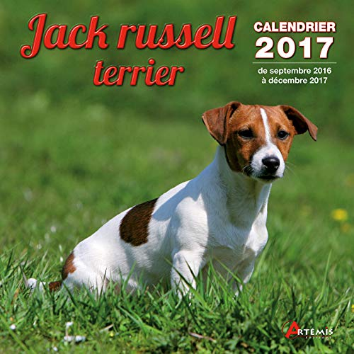 CALENDRIER JACK RUSSELL TERRIER 2017: CALENDRIER 2017