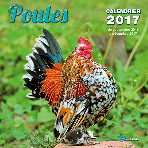 CALENDRIER POULES 2017: CALENDRIER 2017