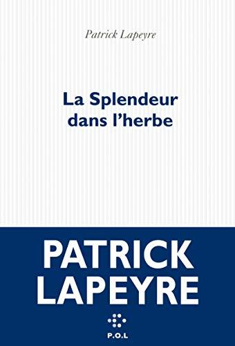 SPLENDEUR DANS L'HERBE (LA): LAPEYRE PATRICK