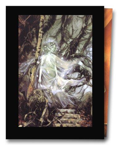 GRAINE DE FOLIE COFFRET T01 A 03 04 HS: CIVIELLO EMMANUEL