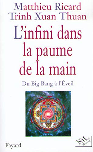 9782841111749: L'infini dans la paume de la main: Du Big Bang à l'Eveil (French Edition)