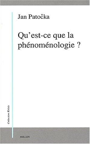 9782841371358: Qu'est-ce que la phénoménologie ?