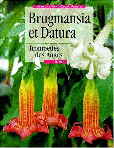 9782841381302: Brugmansia et Datura : Trompettes des Anges