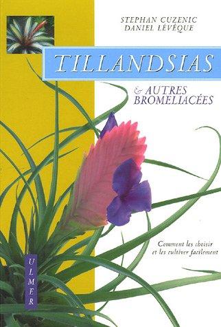 9782841382453: Tillandsias et autres bromeliacées : Comment les choisir et les cultiver facilement