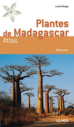 9782841383221: Plantes de Madagascar : Atlas (1Cédérom)