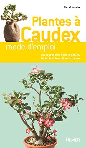 PLANTES A CAUDEX DE A A Z: LENAIN HERVE