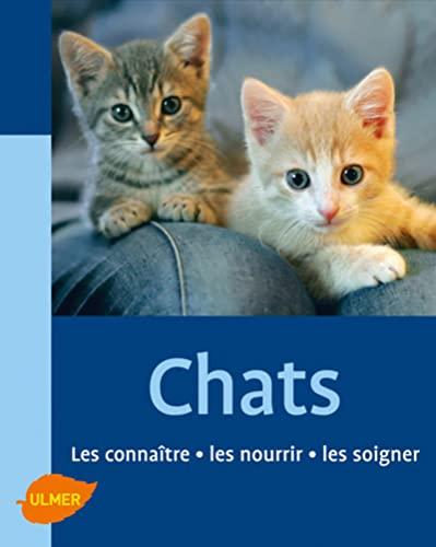 Chats: Gollmann, Birgit