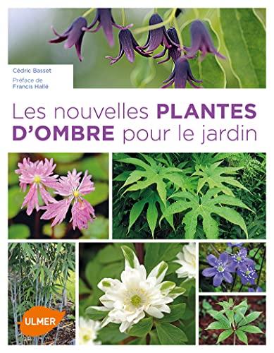 Nouvelles plantes d'ombre pour le jardin: Basset, C�dric