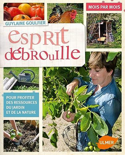 ESPRIT DEBROUILLE MOIS PAR MOIS: GOULFIER GUYLAINE