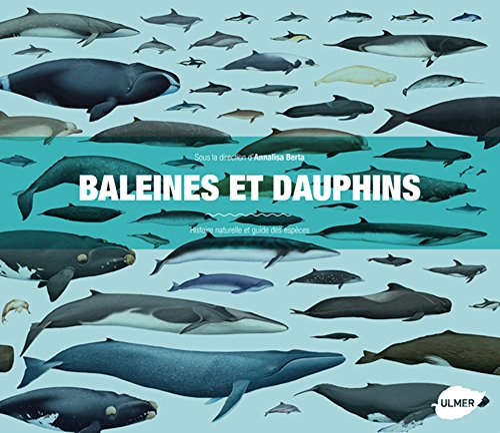 Baleines et dauphins: Berta, Annalisa