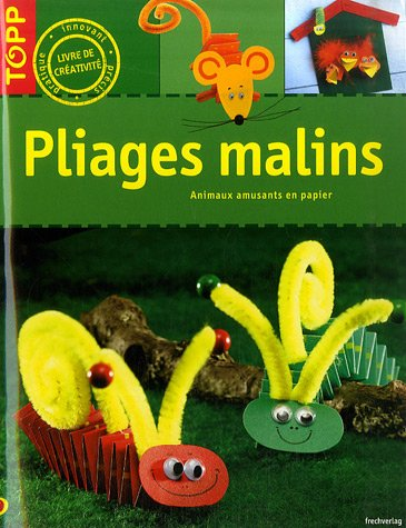 9782841675029: Pliages malins (French Edition)