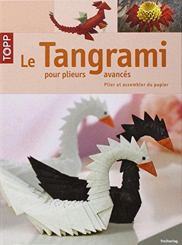 9782841677559: Le Tangrami pour plieurs avancés : Plier et assembler du papier