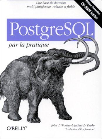 9782841772117: PostgreSQL par la pratique (en français)