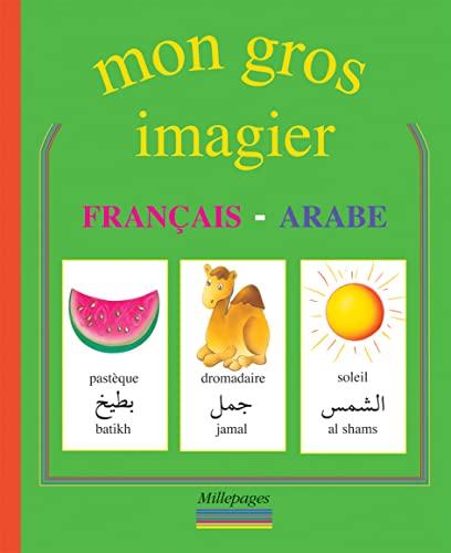 9782842181192: Mon gros imagier français-arabe