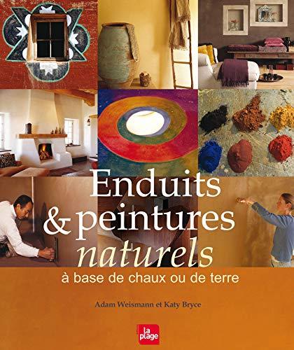 9782842212049: Enduits & peintures à base de chaux ou de terre (French Edition)