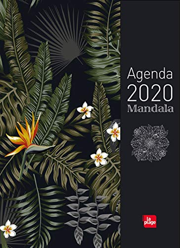 9782842216979: Agenda mandala 2020 grand format
