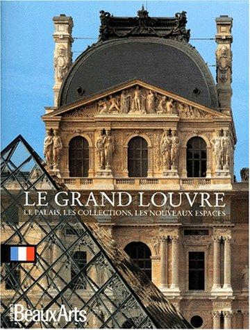 9782842782528: LE GRAND LOUVRE