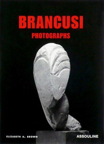 9782843234095: Brancusi: Photographs