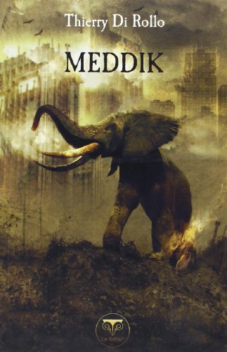 9782843440670: Meddik (French Edition)