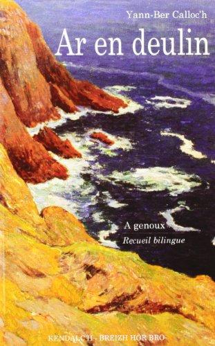 9782843462023: Ar en Deulin Nouvelle Edition (French Edition)