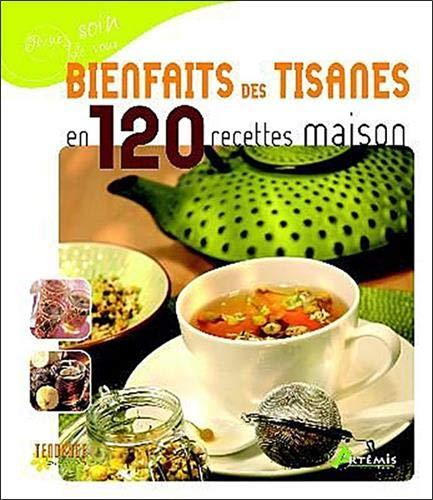 9782844167101: bienfaits des tisanes en 120 recettes maisons