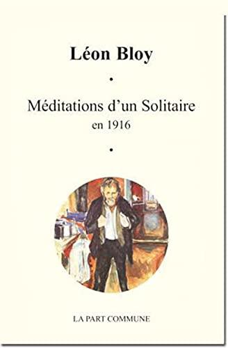 9782844181992: Méditations d'un solitaire en 1916