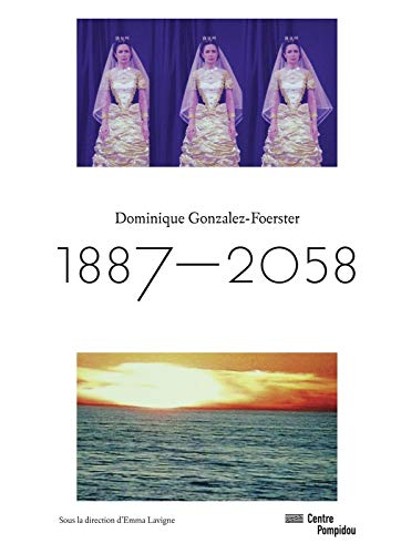 9782844267016: Dominique Gonzales-Foerster - Exhibition Catalogue (French Edition)