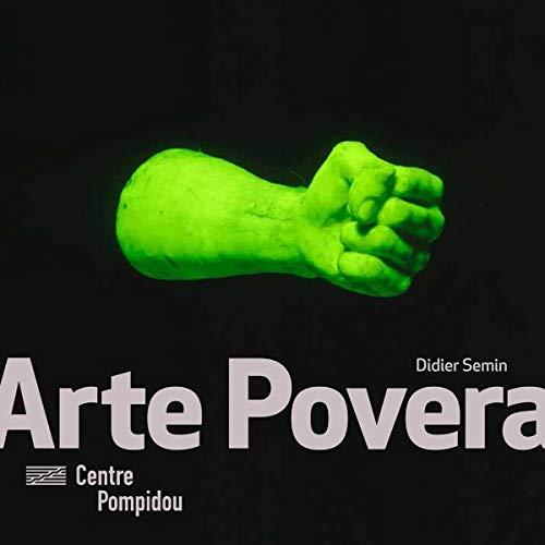 9782844267436: Arte Povera - Collection Monographies Et Mouvements (French Edition)