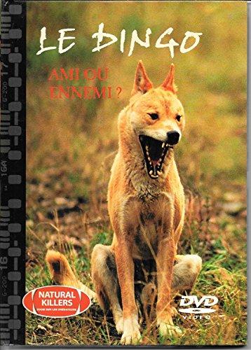 9782845072138: Le Dingo - Ami ou ennemi ?