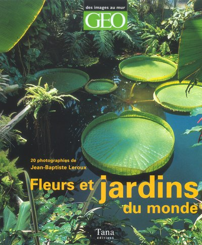 9782845671133: Fleurs et jardins du monde