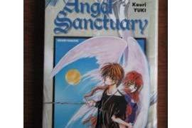 9782845800243: Angel Sanctuary, tome 1