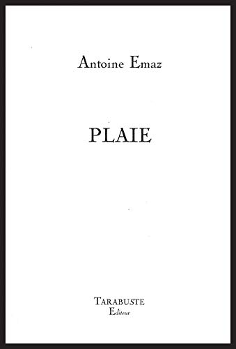 9782845871939: Plaie (French Edition)