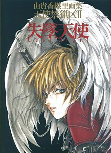 9782845995901: Artbook Lost Angel