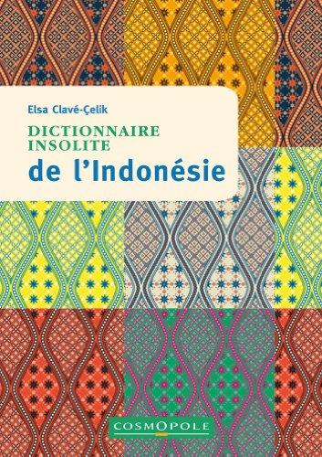 9782846300728: Dictionnaire Insolite de l'Indonesie