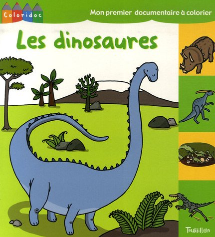 9782848012490: Les dinosaures