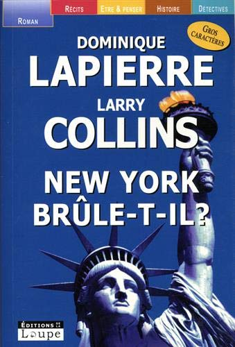 9782848680675: new york brule-t-il ?