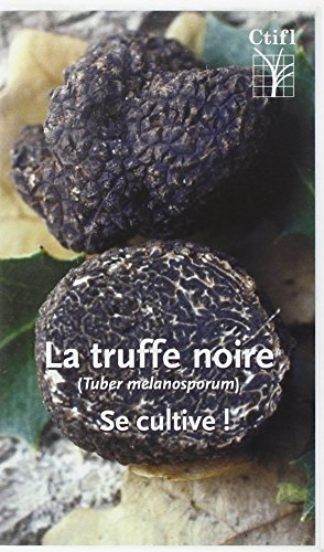 9782848750057: La Truffe Noire (Tuber Melanosporum) Se Cultive ! (K7 Video)
