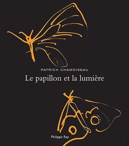 9782848761961: Le papillon et la lumière