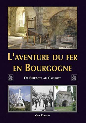 9782849106181: L'aventure du fer en Bourgogne (French Edition)