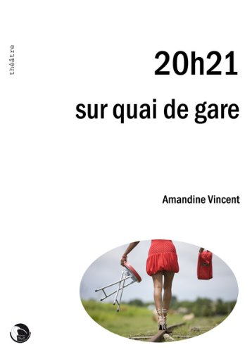 9782849211502: 20h21 Sur Quai de Gare (French Edition)