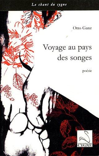 9782849240243: Voyage au pays des songes