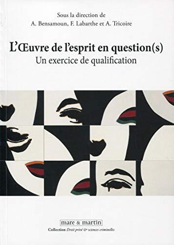 9782849341612: L'oeuvre de l'esprit en questions(s) : Un exercice de qualification