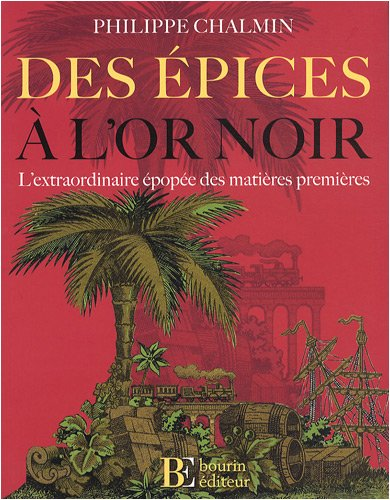 9782849411025: Des épices à l'or noir (French Edition)