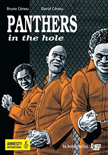 9782849531952: Panthers in the Hole