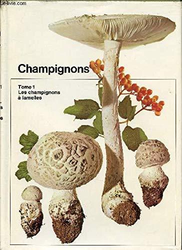 Champignons. Tome 1: Les Champignons a Lamelles,: Schlitter, Jakob
